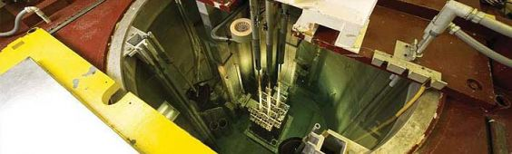 Neutron Imaging of Irradiated Nuclear Fuel at Idaho National Laboratory